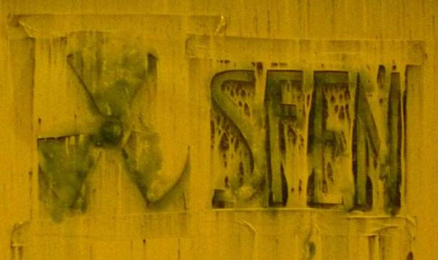sfen2.cleaned